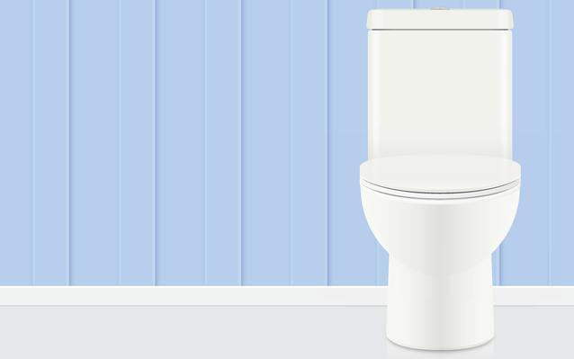 Choisir le type de WC à installer