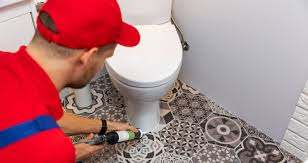 changement wc complet